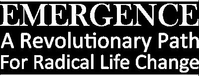 Law of Emergence | Derek Rydall