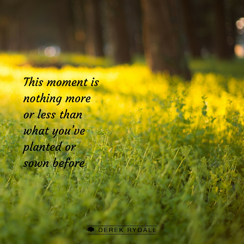 Always Be Planting: How to Harvest Your Past and Seed Your Future [Podcast]
