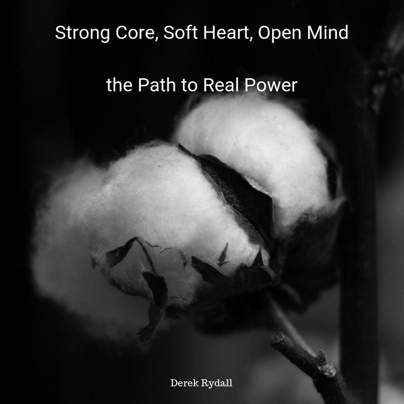 Strong Core, Soft Heart, Open Mind: the Path to Real Power [Podcast]