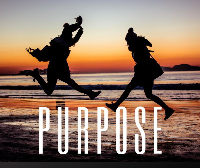 Work & Purpose [Podcast]