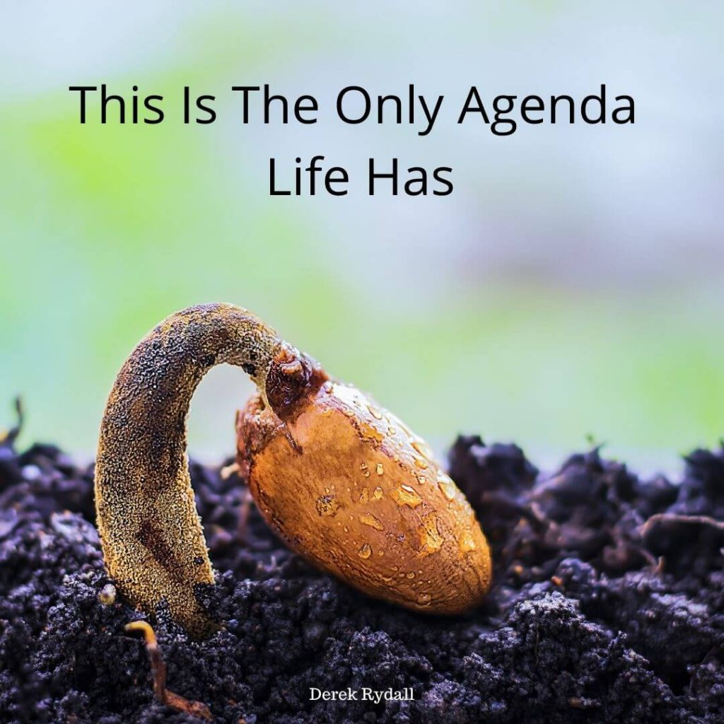 This Is The Only Agenda Life Has [Podcast]