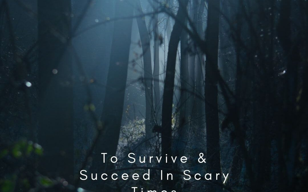 7 Steps to Survive & Succeed In Scary Times [Podcast]