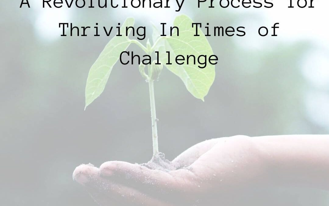 Emergence – A Revolutionary Process for Thriving In Times of Challenge [Podcast]